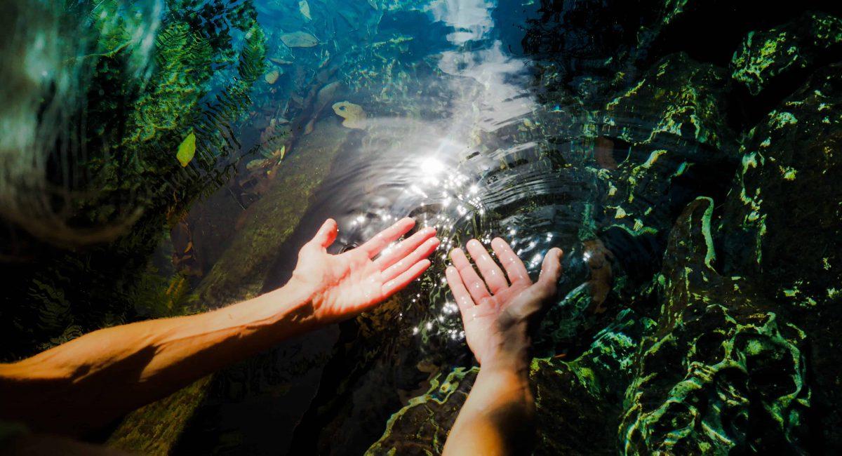 מים חיים